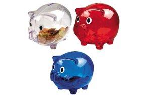COIN BANK PIG
